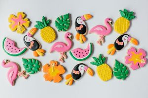 The Artful Biscuit Co – Brand Shoot